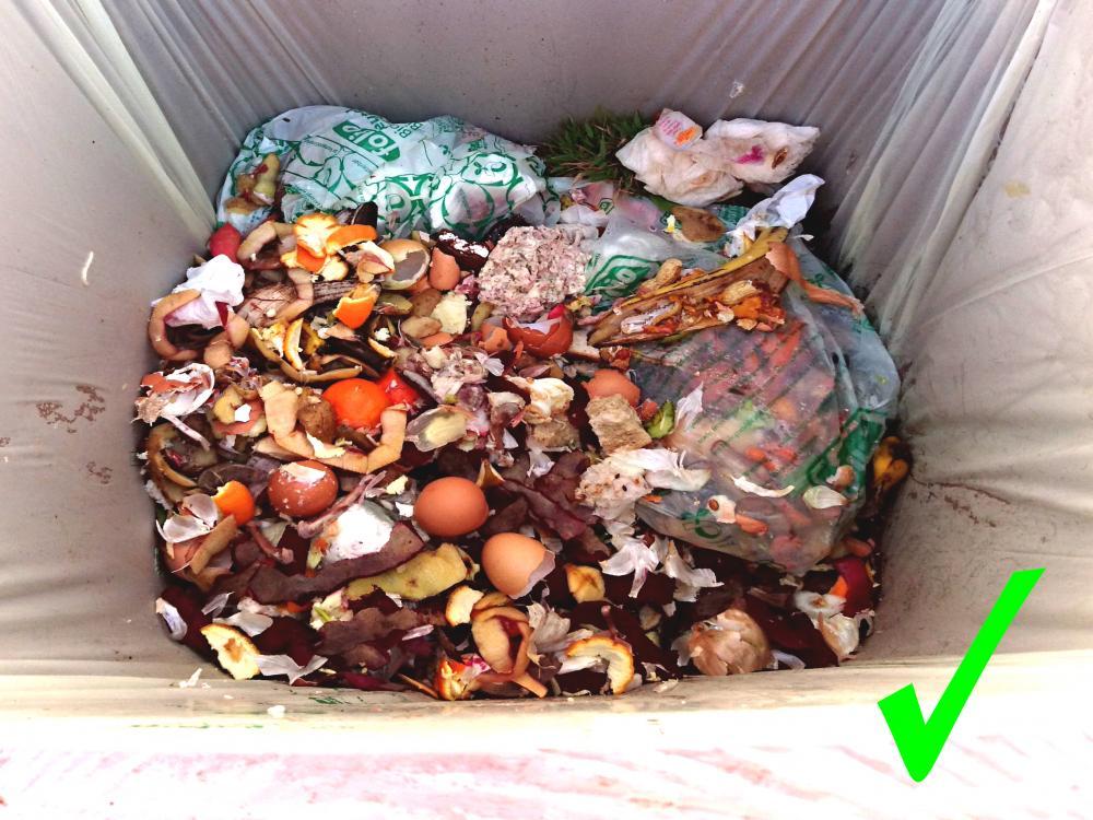 PRAVILNO - biorazgradljivi odpadki v zabojniku brez plastičnih vrečk