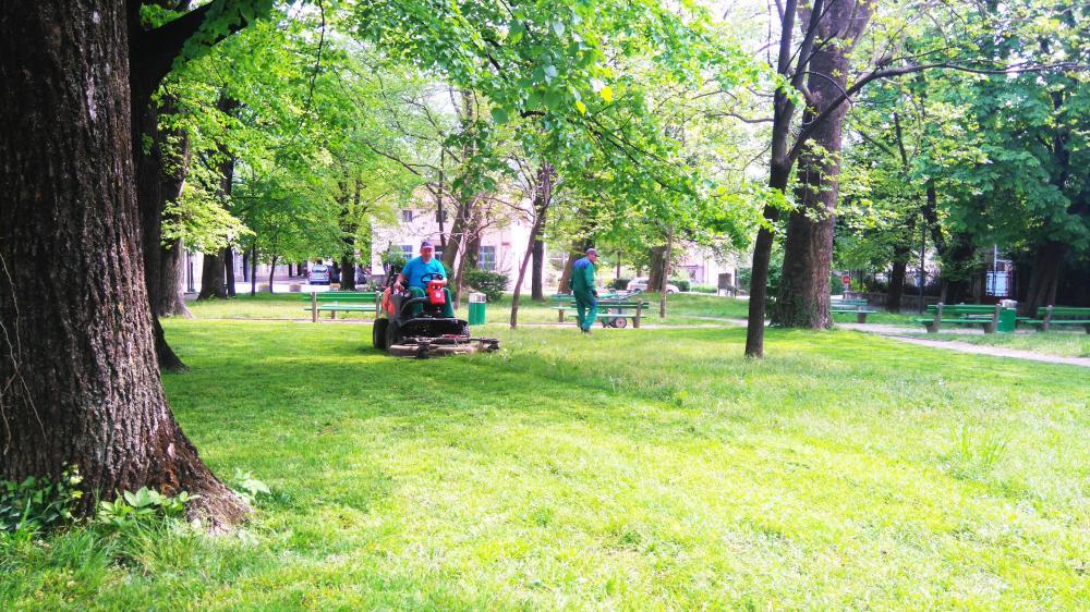 Košnja trave v parku